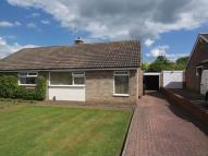 Bungalow to rent in Sedgefield Road, Acklam...