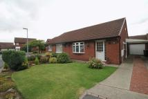 Semi-Detached Bungalow to rent in Saxonfield...