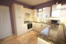 2 bed Semi-Detached Bungalow to rent in Bellerby Road, Hartburn...