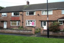 property to rent in Harewood Crescent, South Wellfield