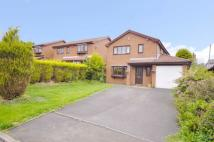 4 bed Detached home in Upper Passmonds Grove...