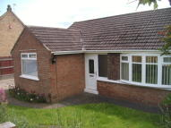 Semi-Detached Bungalow to rent in Tollesby Lane...