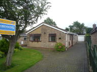 Detached Bungalow to rent in Botany Way, Nunthorpe...