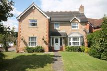 4 bed Detached property to rent in Hammond Close...