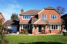 property to rent in Treadcroft Drive, Horsham, West Sussex