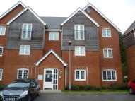 new Apartment to rent in MARINA VIEW , FAZELEY