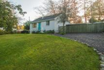 2 bed Detached Bungalow in Grianan, Taynuilt...