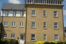 Ground Flat to rent in Camulus Close, Braintree...