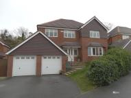 15 Gwynant Detached house for sale