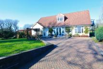 4 bedroom Detached home in Cae Ffynnon Farm