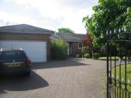 4 bed Detached Bungalow to rent in Collingwood Crescent...