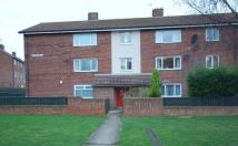 Lutterworth Road Apartment to rent