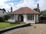 Detached Bungalow in Edge Hill, Darras Hall