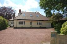 5 bed Detached Bungalow to rent in Runnymede Road...