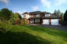 4 bedroom Detached property to rent in Woodlands, Darras Hall