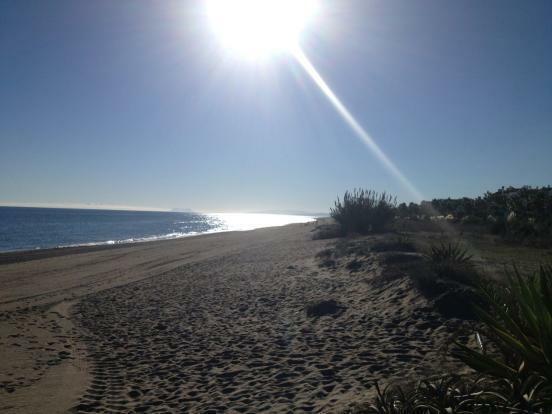 Beach 100m away