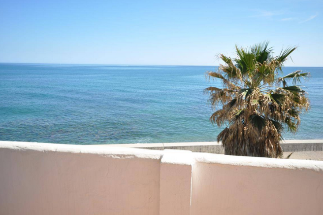 Terrace view south