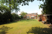 Bungalow for sale in St Johns, Woking