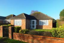 Detached Bungalow to rent in POUND ROAD...