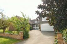 HEMINGFORD ROAD Detached property to rent