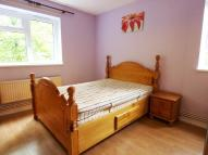 Hanley Road Flat to rent