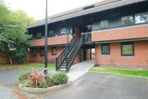 Apartment to rent in Hamnett Court, Birchwood...