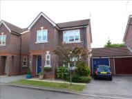 Link Detached House for sale in Springfields, BRAINTREE