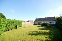 Detached Bungalow for sale in Mill Lane, Cressing...