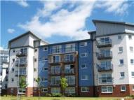 Flat to rent in Scapa Way, Stepps...