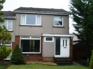 Weaver Avenue semi detached property to rent