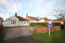 Detached Bungalow in Scalford Road...