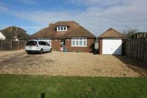 Detached Bungalow for sale in Worplesdon