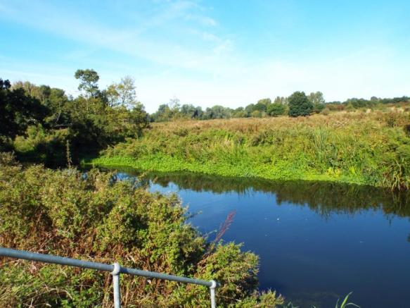 Nearby River Wensum