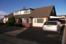Semi-Detached Bungalow to rent in Beech Avenue, Warton...