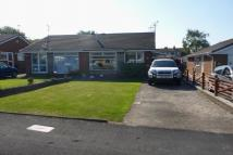 Ash Drive Semi-Detached Bungalow to rent