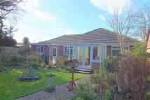 Bungalow for sale in Normanton Close...