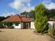5 bedroom Detached Bungalow to rent in Forest Green, Dorking...