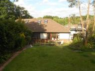 Semi-Detached Bungalow in Coulsdon, Surrey
