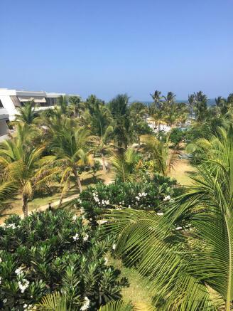 View palm trees Billionaire Resort Kenya