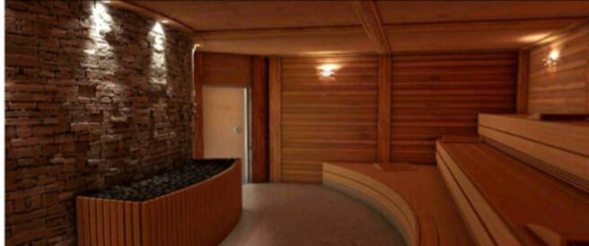 CGI of Les Terrasses du Lac sauna