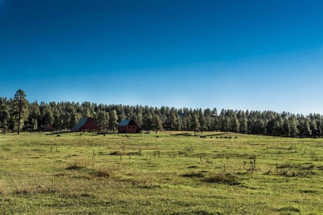 Jackson Creek Ranch Colorado