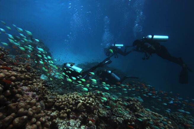 Diving Soneva Fushi Maldives