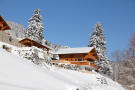 Chalet Alina under snow cover