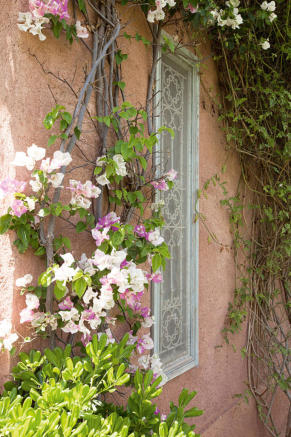 Wall flowers and window at Villa Jardin