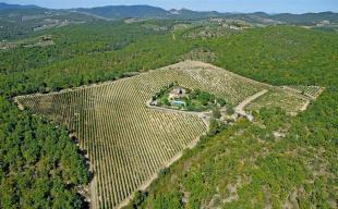 Aerial view swimming pool Tenuta Cipressino Tuscany
