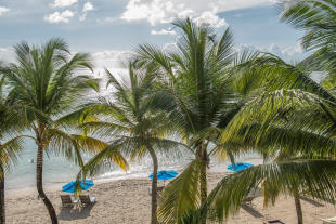View of the beach through palm trees at The Landings in St Lucia
