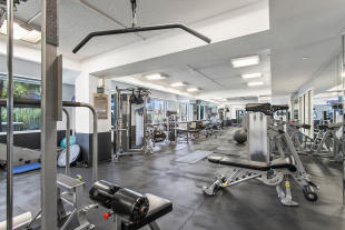 Communal building gym at 440 Kent Avenue in Brooklyn, New York
