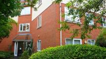 Flat to rent in Wilbury Road, Hove