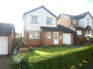 Detached property to rent in Allerburn Lea, Alnwick...