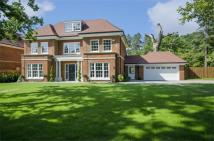 5 bed Detached home in St. Leonards Hill...